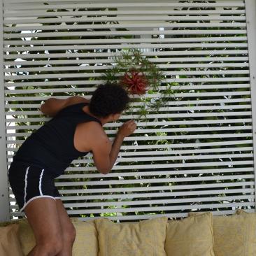 AponteSierra Working on Interior Design using live plants